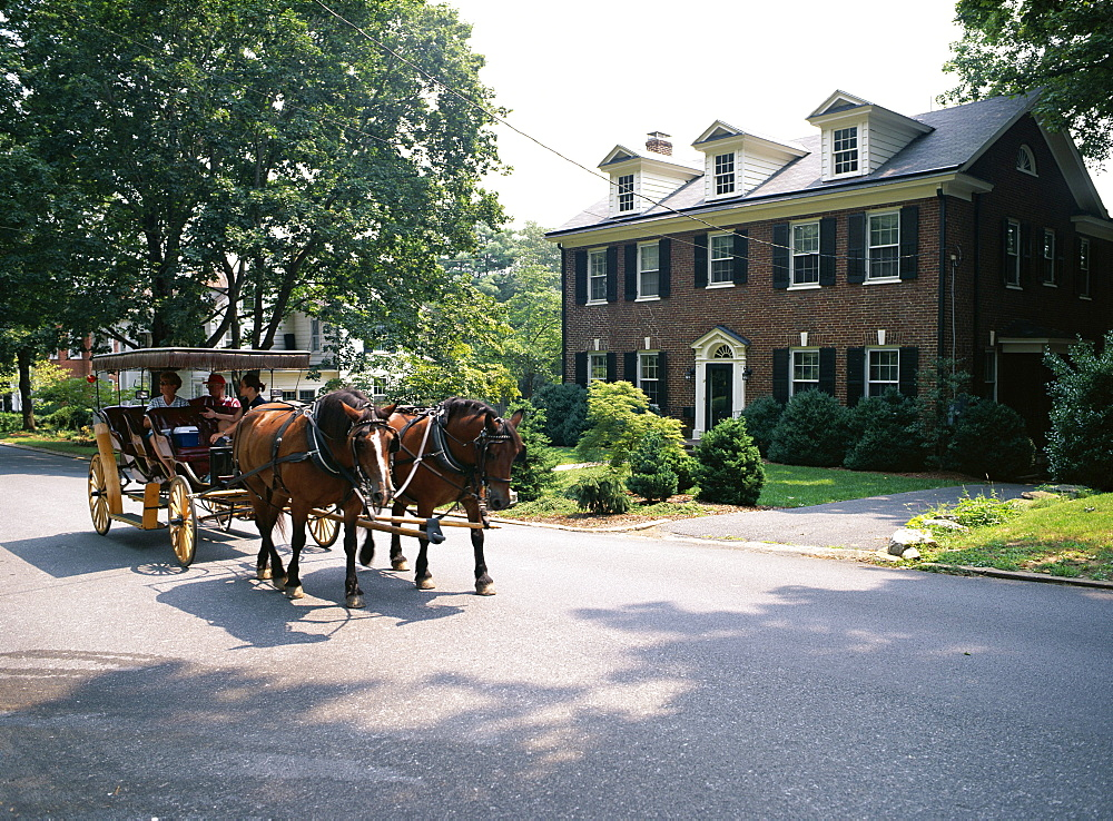 Horse and carriage in Lee Avenue, Lexington, Virginia, United States of America (USA), North America