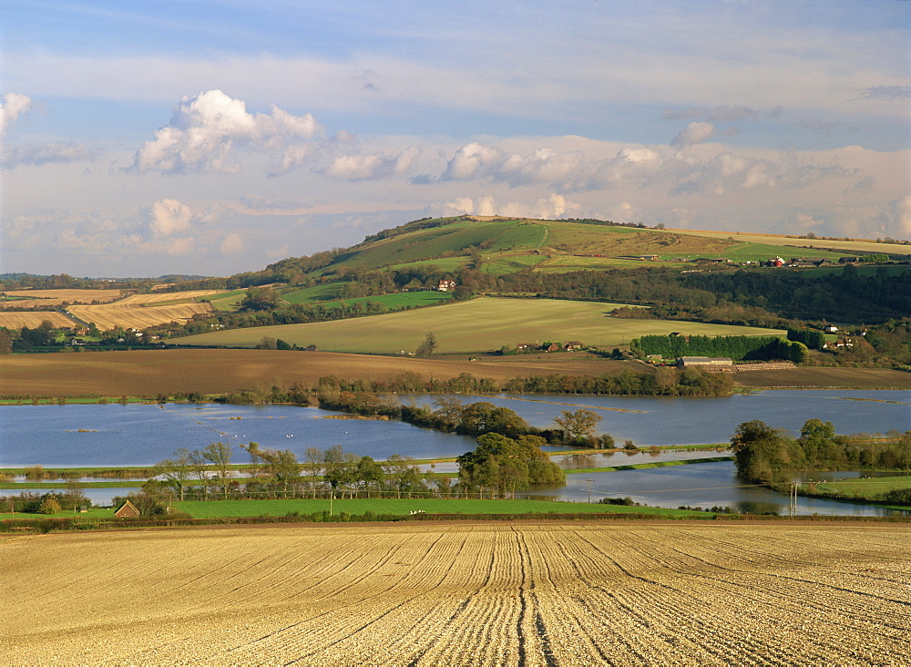 Arun Valley in food, with South Downs beyond, Bury, Sussex, England, United Kingdom, Europe - 586-53