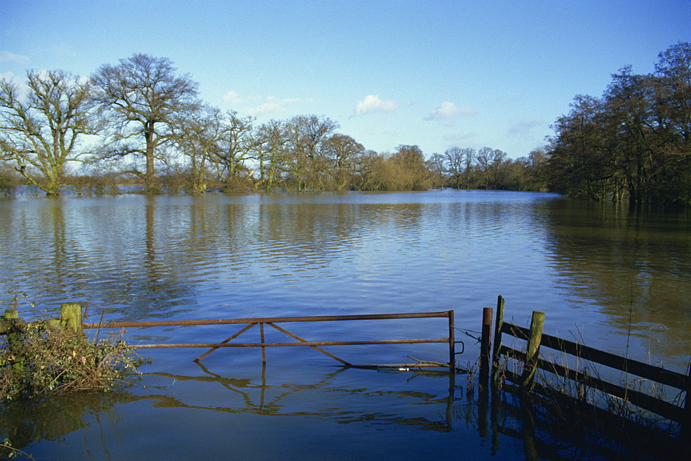 Flooding of fields from River Severn near Tirley, Gloucestershire, England, United Kingdom, Europe - 59-1506