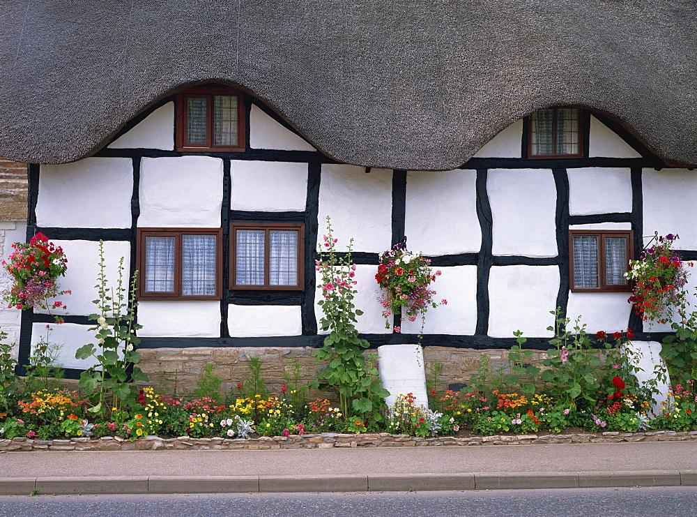 Thatched cottage, Worcestershire, England, United Kingdom, Europe - 59-1564