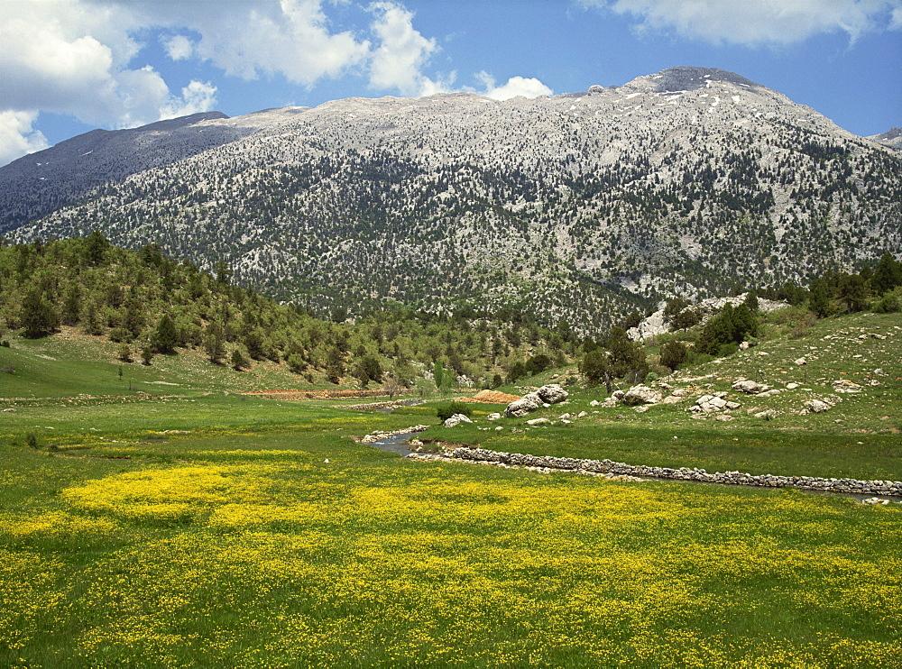 Springtime in the hills near Guzelyurt, south of Nevsehir, Anatolia, Turkey, Asia Minor, Eurasia - 59-3050