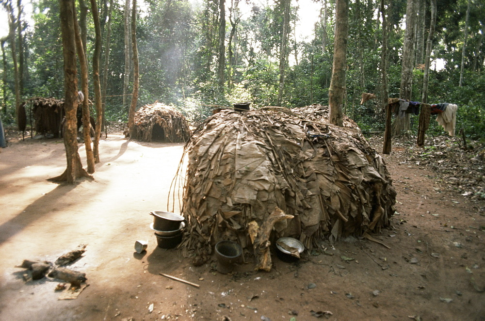 Primitive huts of pygmy village in forest near Bagandou, Central African Republic, Africa