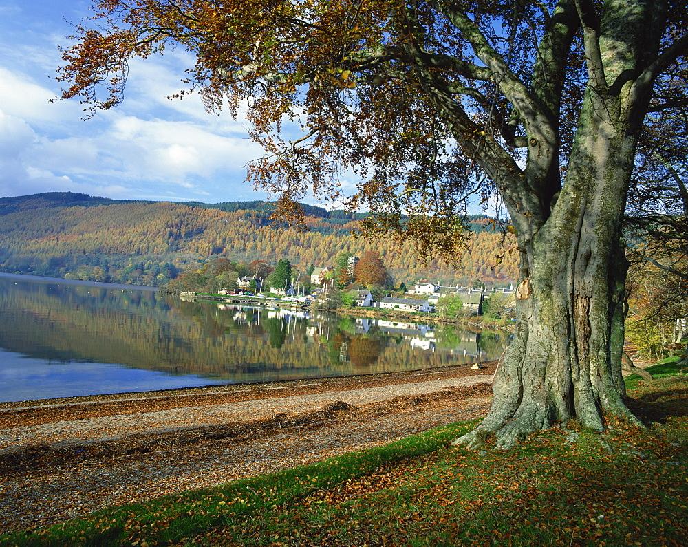 Loch Tay, Kenmore, Tayside, Highlands, Scotland, United Kingdom, Europe