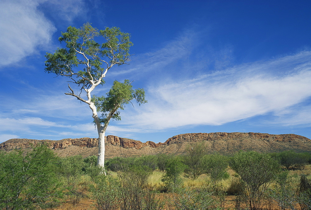 Landscape in the West MacDonnell Ranges near Alice Springs in the Northern Territory, Australia, Pacific