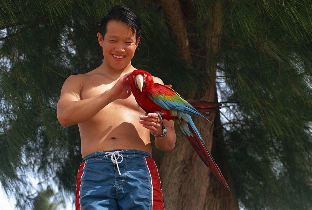 Young man holding parrot, Kauai, Hawaii, Hawaiian Islands, United States of America, Pacific, North America - 615-602