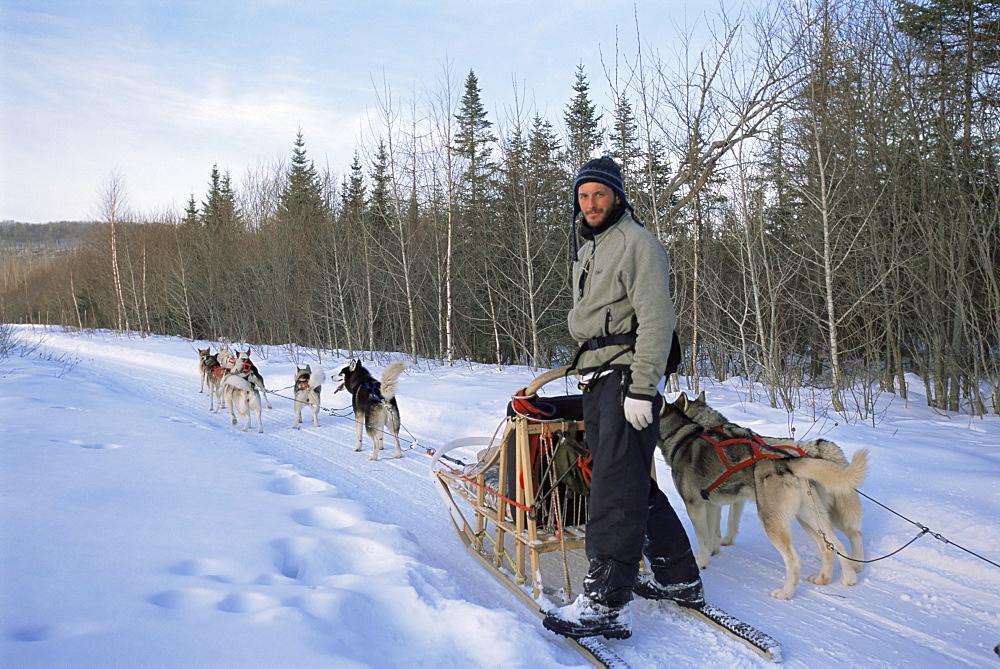 Dog sledding with Aventure Inukshuk, Quebec, Canada, North America