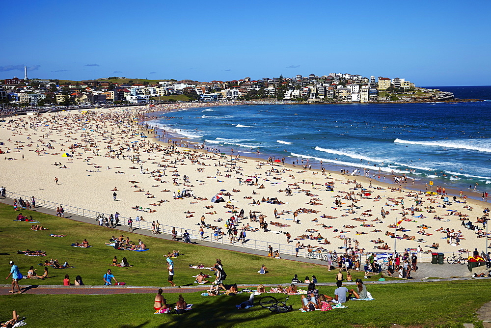 Bondi Beach, Sydney, New South Wales, Australia, Pacific - 627-1262