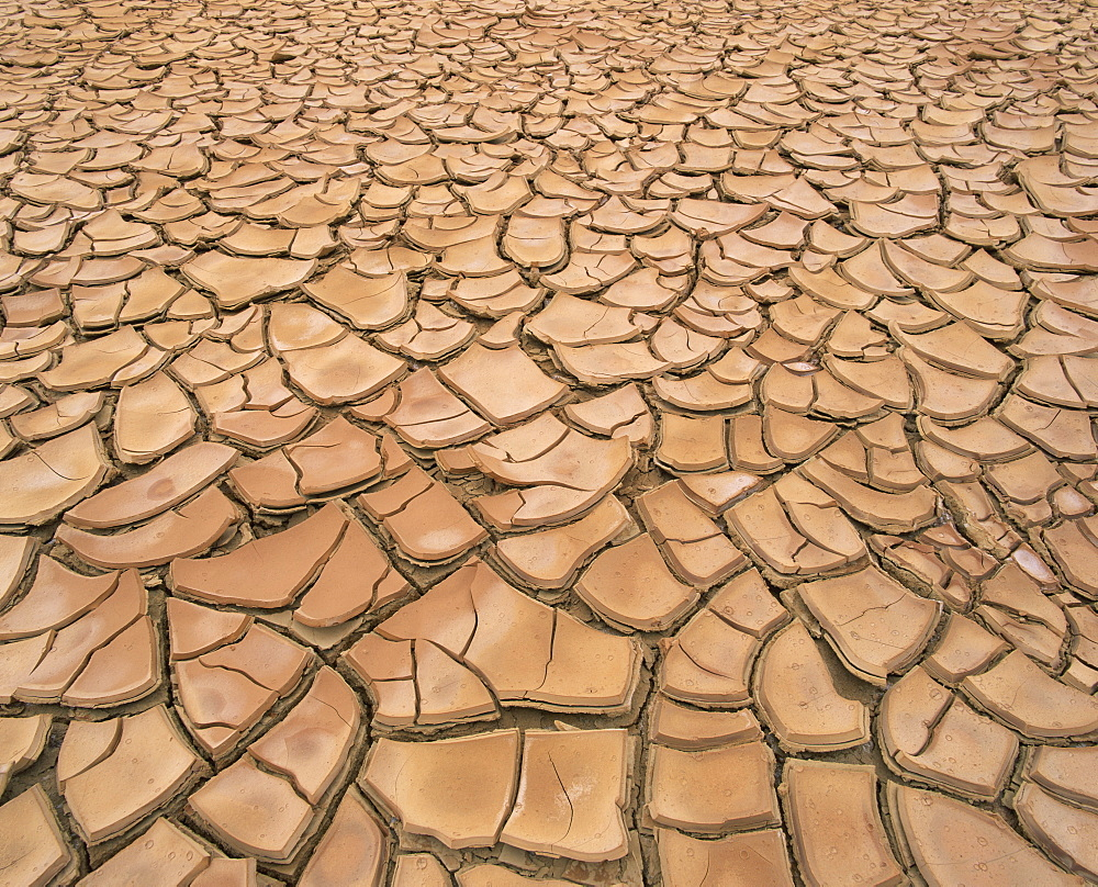 Arid landscape of dry cracked earth in a drought, South Australia, Australia, Pacific - 627-67