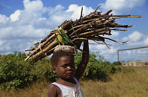 Girl carrying firewood, Mozambique, Africa