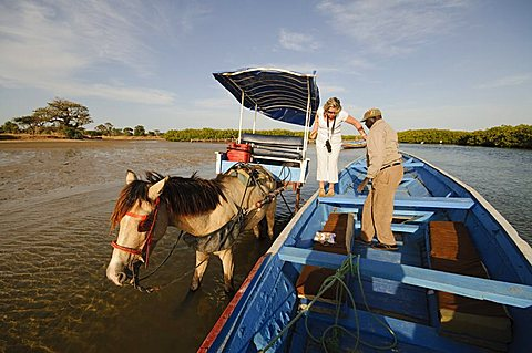 Delivering passangers to pirogue or fishing boat on the backwaters of the Sine Saloum delta, Senegal, West Africa, Africa