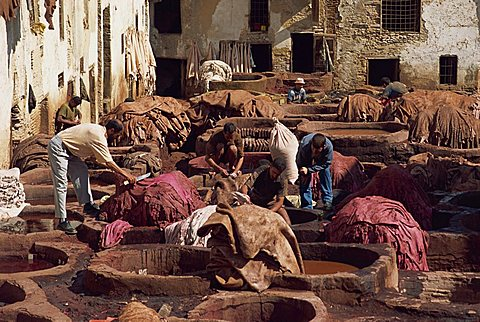 The Tannery, Fez, Morocco, North Africa, Africa