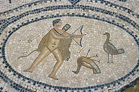 Mosaic floor of hunting scene, Roman archaeological site of Volubilis, UNESCO World Heritage Site, Morocco, North Africa, Africa