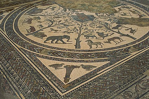 Mosaic floor, Volubilis, UNESCO World Heritage Site, Morocco, North Africa, Africa