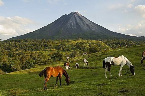 Arenal Volcano from the La Fortuna side, Costa Rica - 641-5832