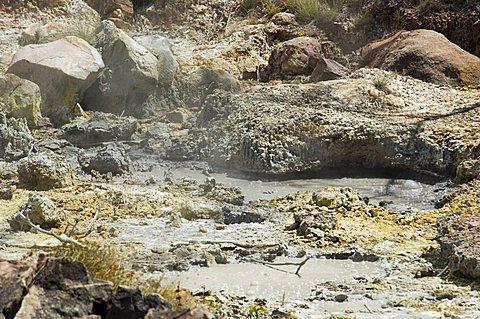 Steaming volcanic mud pools, Rincon de la Vieja National Park at foot of Rincon Volcano, Guanacaste, Costa Rica, Central America
