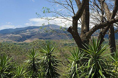 Rincon Volcano from the Hacienda Guachipelin, near Rincon de la Vieja National Park, Guanacaste, Costa Rica, Central America
