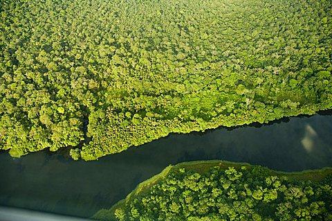 River in Tortuguero National Park, Costa Rica, Central America