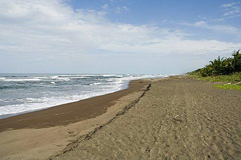 Tortuguero Beach, Caribbean Coast, Tortuguero National Park, Costa Rica, Central America