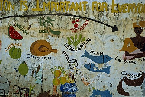 Mural at village school near Banjul, Gambia, West Africa, Africa