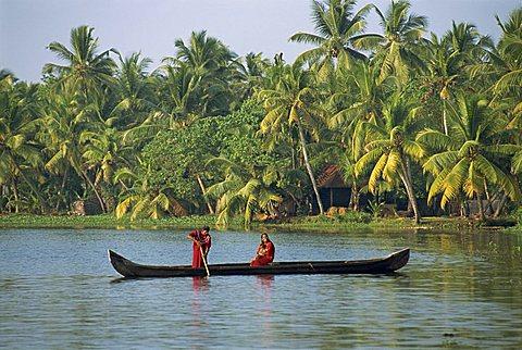 Backwater, Kerala state, India, Asia