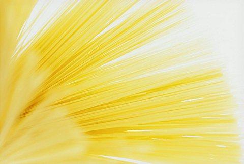 Studio shot of spaghetti (pasta)