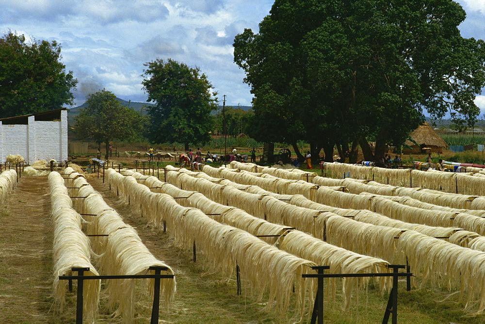Sisal rope factory, Taveta, Kenya, East Africa, Africa - 65-334