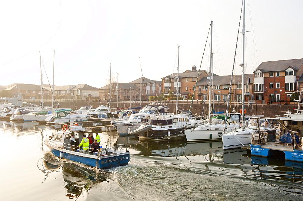 A view of the Marina at Penarth, Glamorgan, Wales, United Kingdom, Europe - 663-801