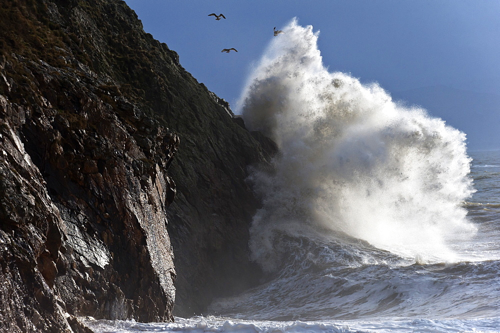 Huge waves crash against cliffs at Criccieth, Gwynedd, Wales, United Kingdom, Europe