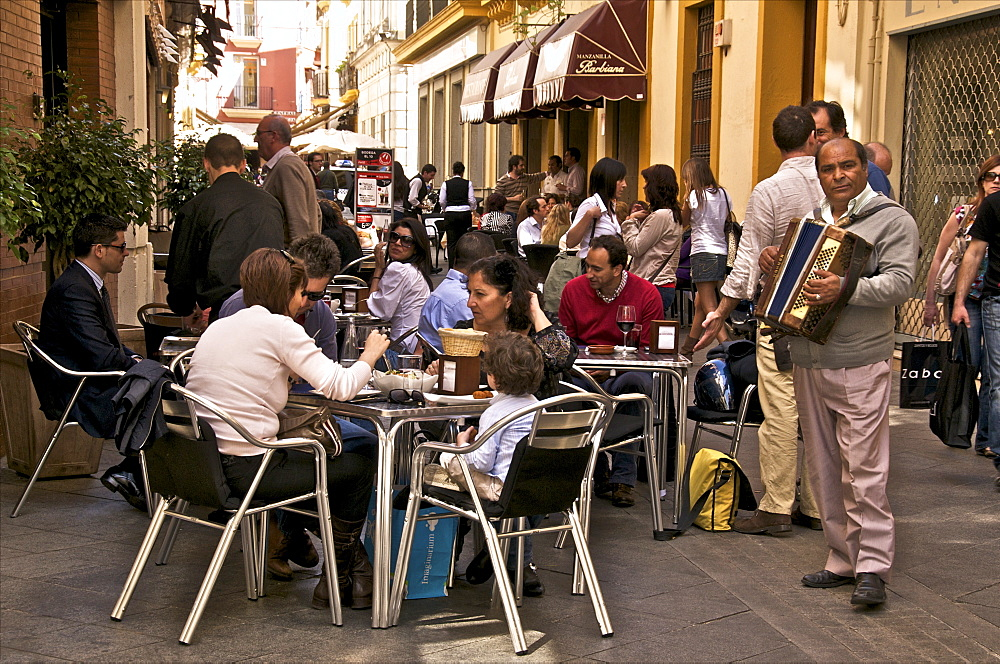 A musician playing the accordion at a street cafe, Seville, Andalusia, Spain, Europe