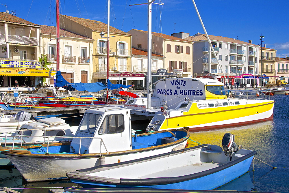 Boats in harbour, Meze, Herault, Languedoc Roussillon region, France, Europe - 665-5431