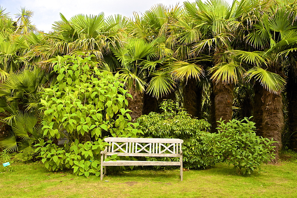 Wooden garden seat, Botanical gardens of Chateau de Vauville, Cotentin, Normandy, France, Europe - 665-5489