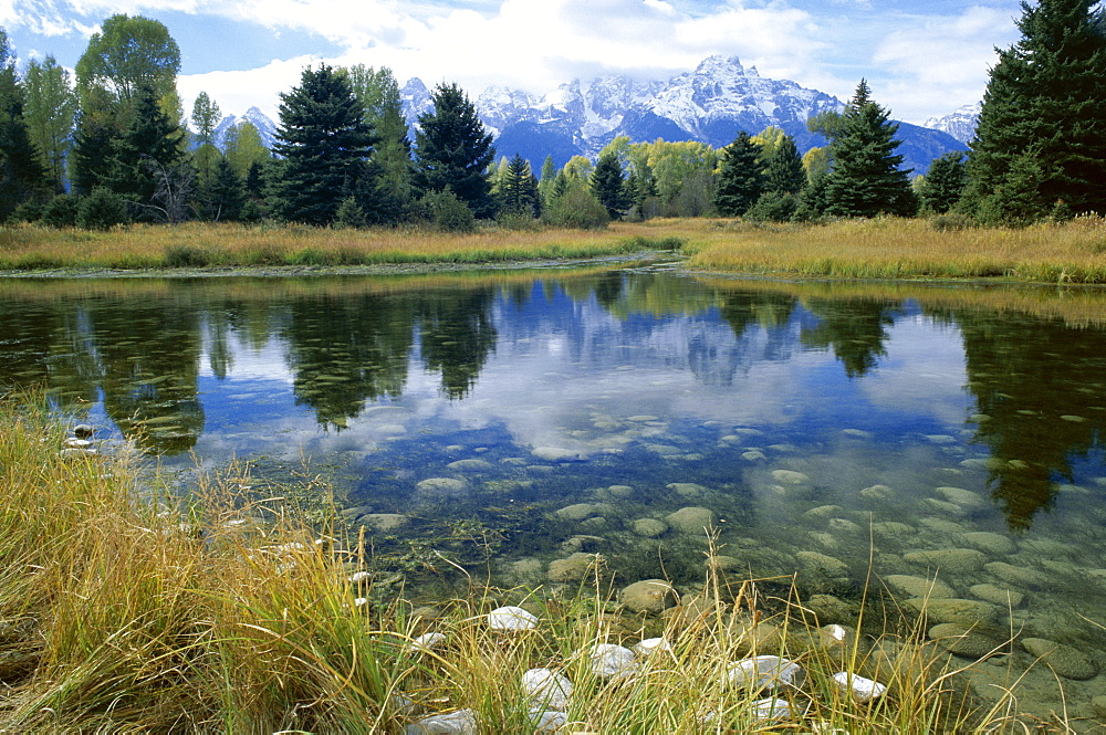 Teton Mountains seen from Schwabacher's Landing, Grand Teton National Park, Wyoming, United States of America (U.S.A.), North America