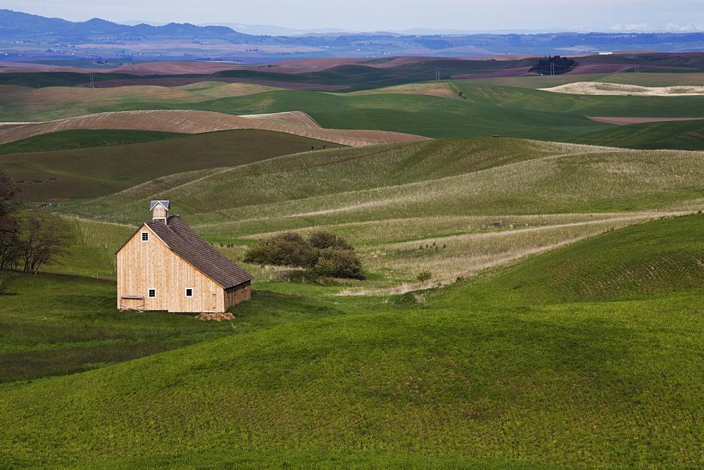Barn in the Palouse, Idaho, United States of America, North America