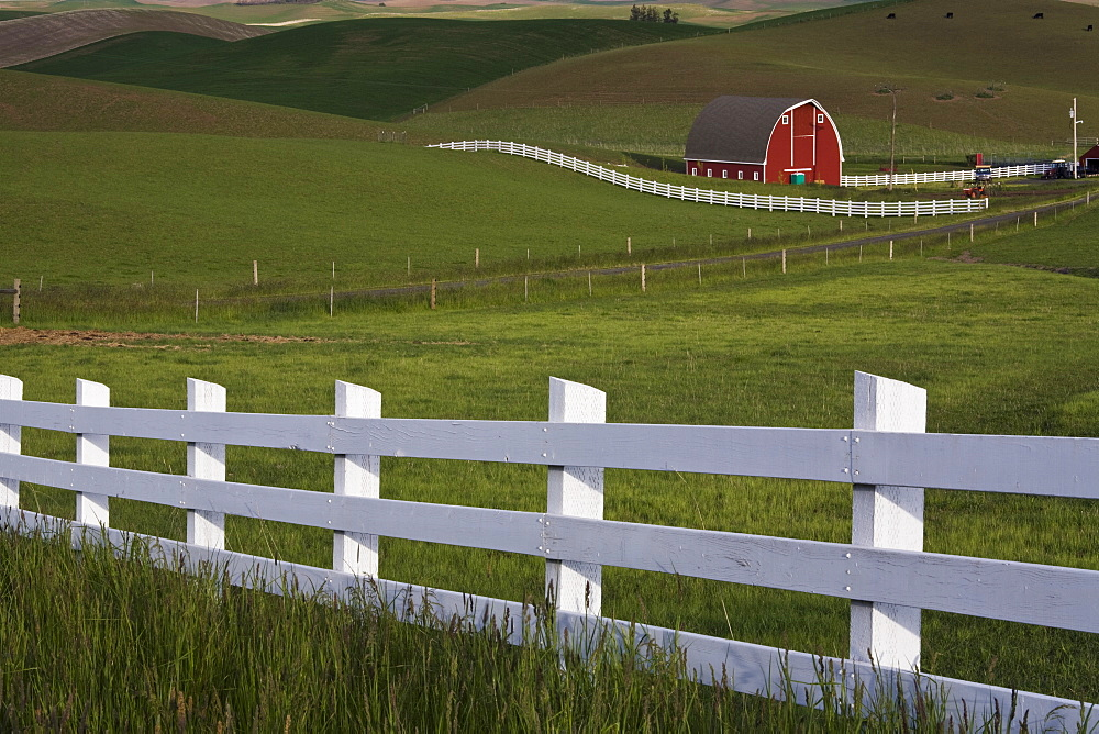Barn in the Palouse, Washington State, United States of America, North America