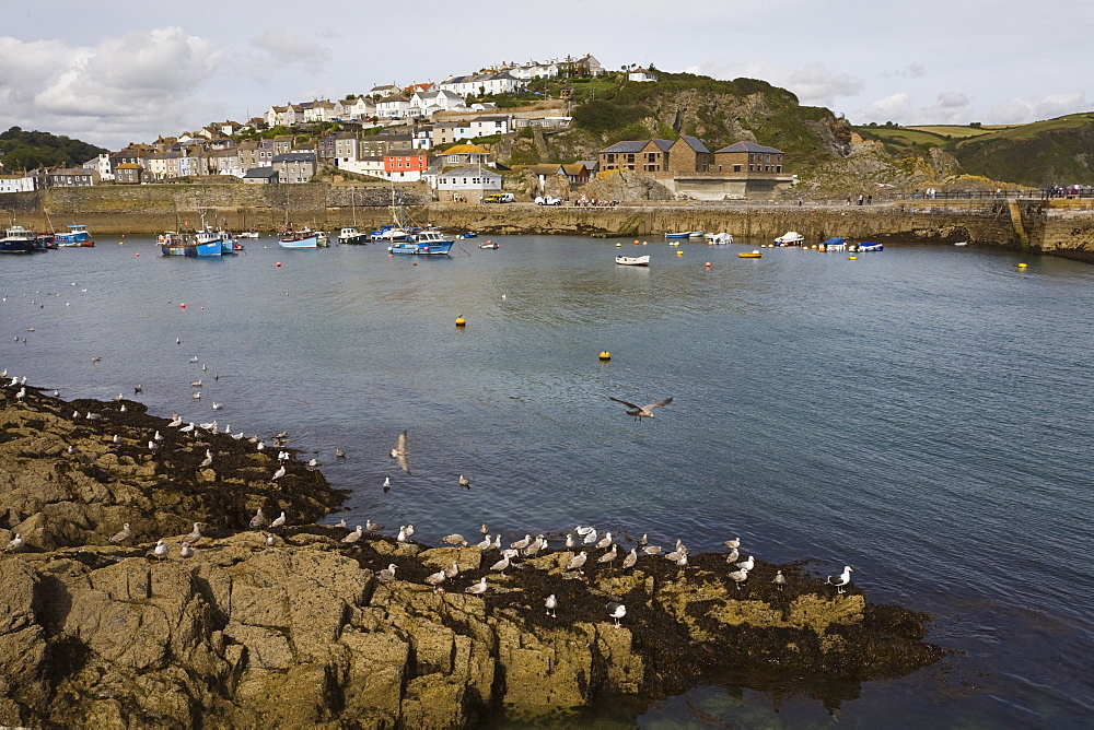 Mevagissey, St. Austell, Cornwall, England, United Kingdom, Europe