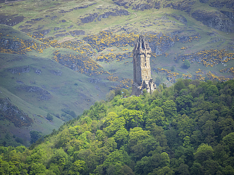 Wallace Monument, Stirling, Scotland, United Kingdom, Europe - 667-2590