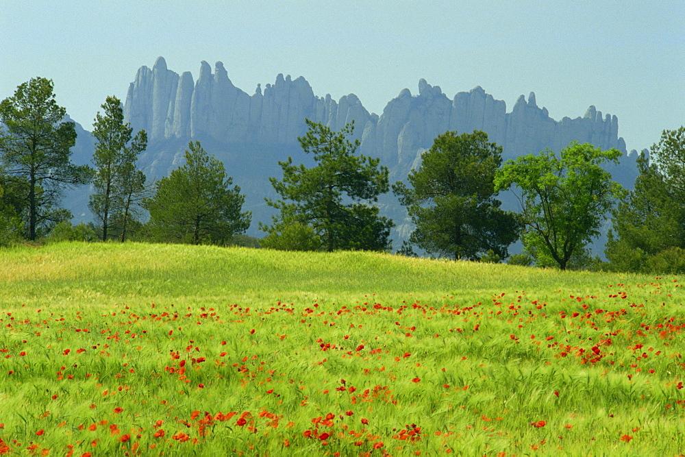 Sierra de Montserrat, Catalonia, Spain, Europe