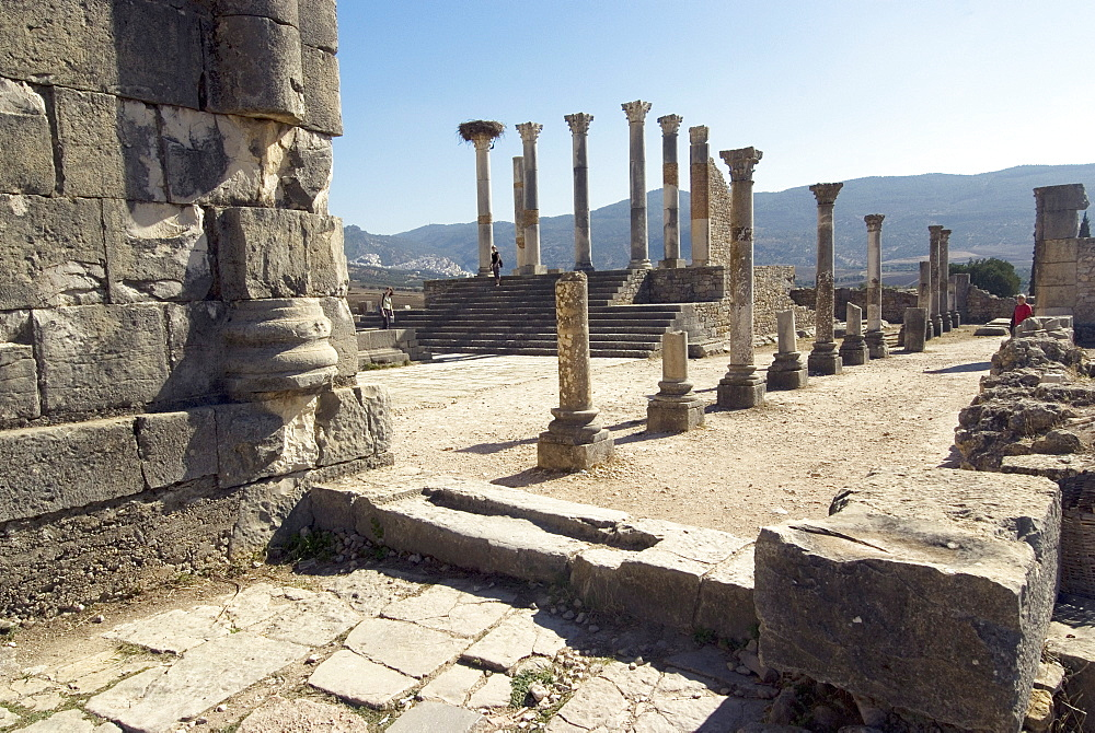 Forum, Roman site of Volubilis, UNESCO World Heritage Site, Morocco, North Africa, Africa