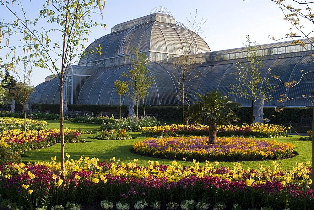 Palm House, Royal Botanic Gardens (Kew Gardens), UNESCO World Heritage Site, Kew, Surrey, England, United Kingdom, Europe