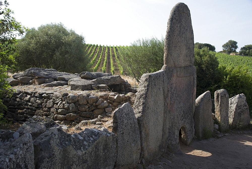 Coddhu Vecchju (Tomba di Giganti), a megalithic Sardinian gallery grave, near Arzachena, Sardinia, Italy, Europe - 685-2597