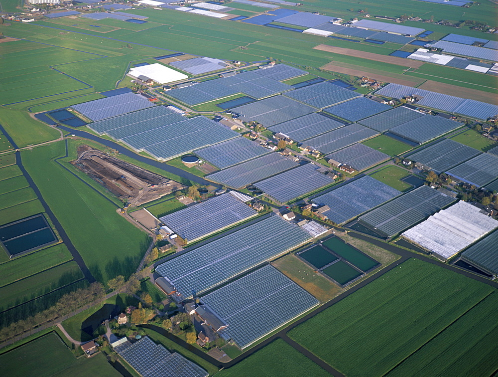 Aerial view of greenhouses, Rotterdam, The Netherlands (Holland), Europe