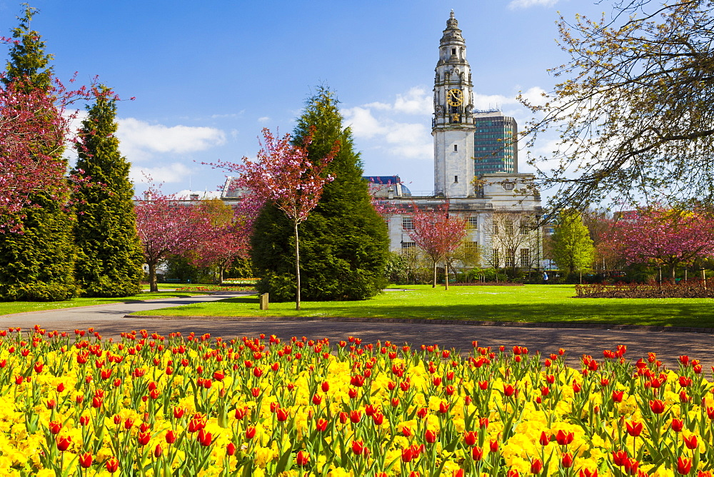City Hall, Alexandra Gardens, Cathays Park, Cardiff, Wales, United Kingdom, Europe