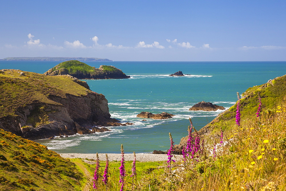 Solva, Pembrokeshire, Wales, United Kingdom, Europe - 696-787