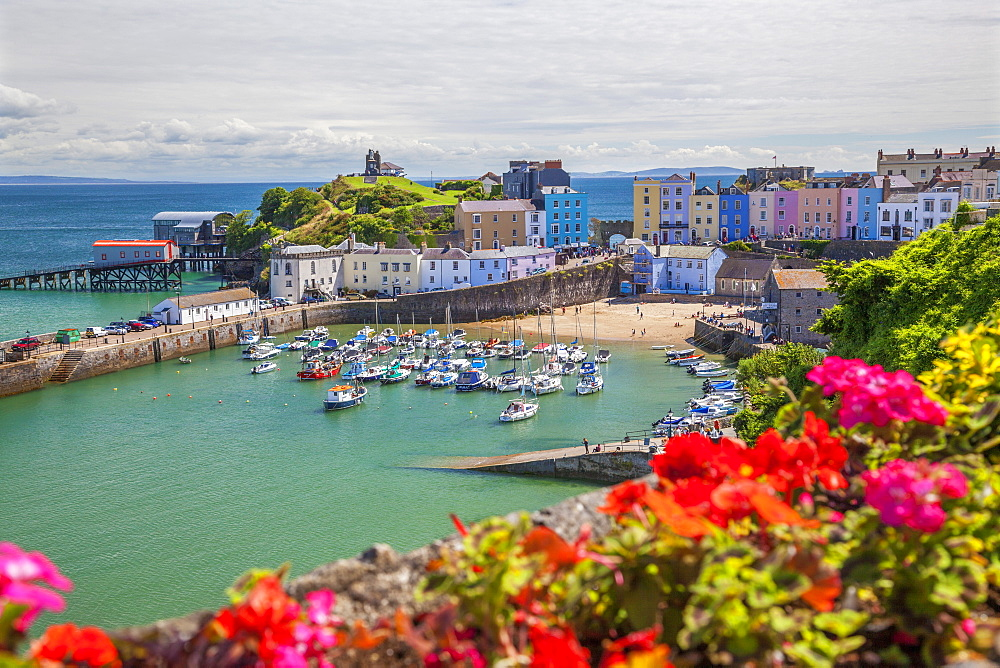 Tenby, Pembrokeshire, Wales, United Kingdom, Europe - 696-802