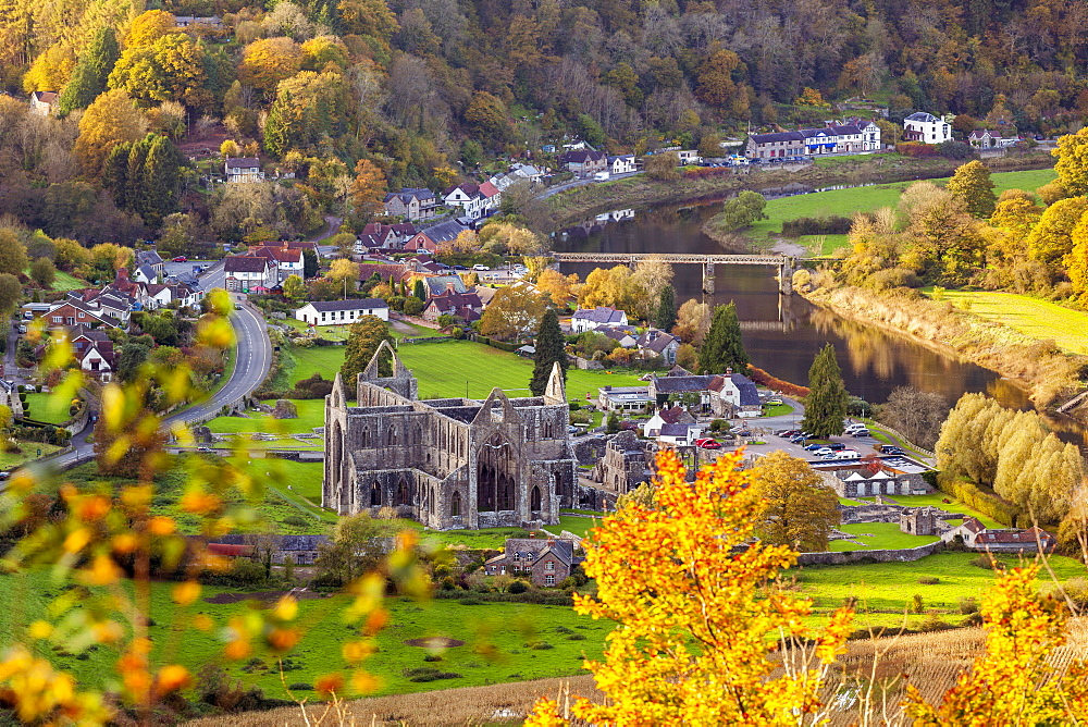 Tintern Abbey, Wye Valley, Monmouthshire, Wales, United Kingdom, Europe - 696-869