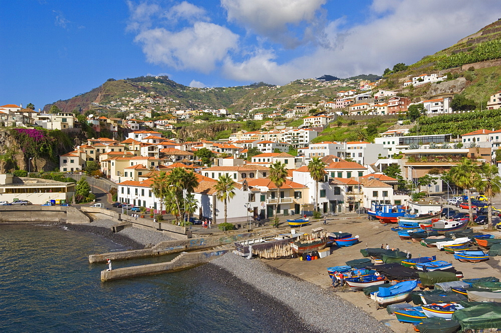 Fishing boats in the small south coast harbour of Camara de Lobos, Madeira, Portugal, Atlantic, Europe