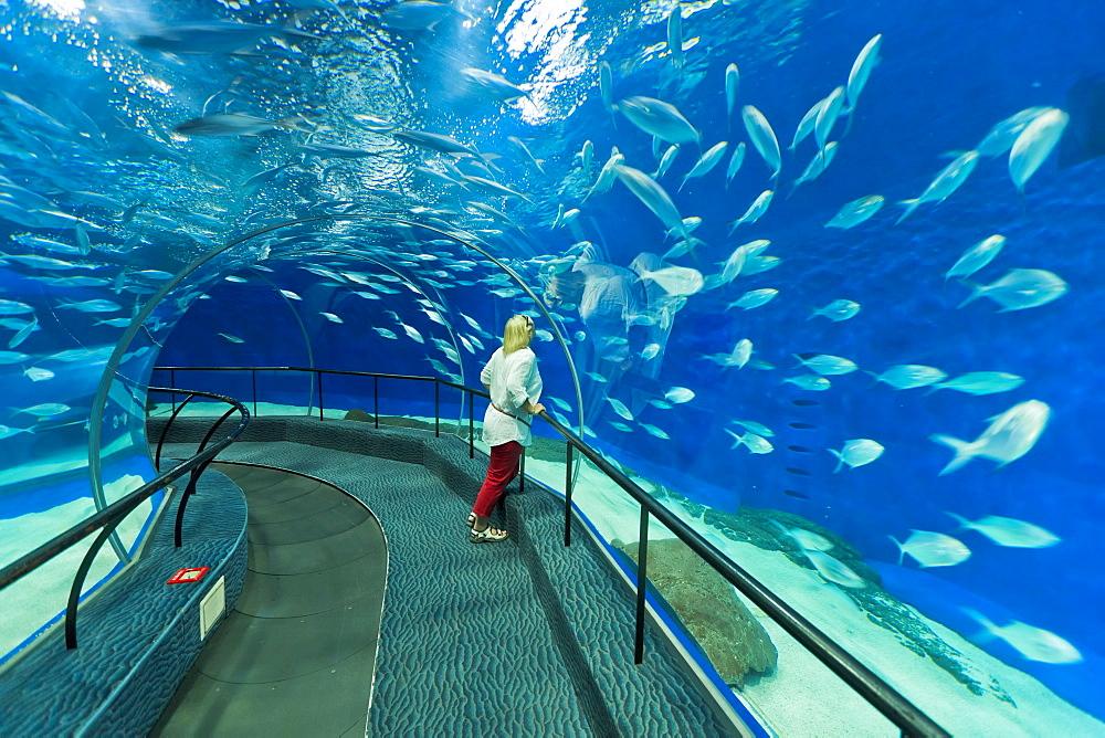 Female tourist at Ocean Aquarium, Shanghai, China, Asia