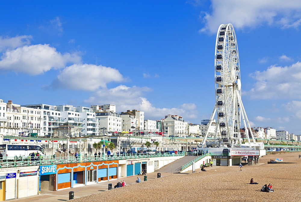 The Brighton Wheel on the seafront at Brighton, East Sussex, England, United Kingdom, Europe