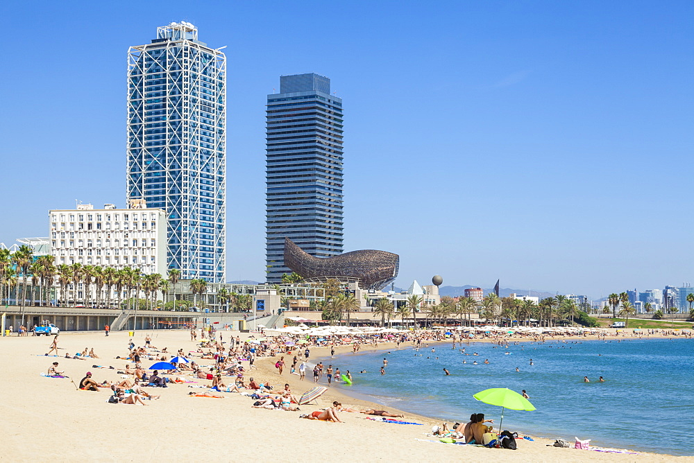 People sunbathing on Barcelona beach, Barceloneta, Barcelona, Catalonia, Catalunya, Spain, EU, Europe