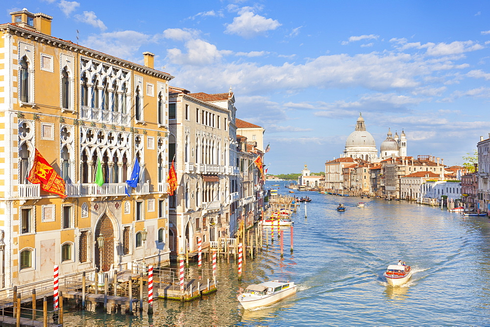 Vaporettos (water taxis) passing Palazzo Cavalli-Franchetti, on the Grand Canal, Venice, UNESCO World Heritage Site, Veneto, Italy, Europe